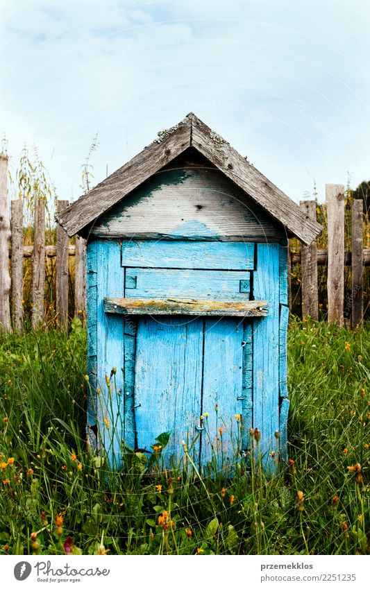 Old wooden hive painted in blue standing in the countryside Garden Landscape Grass Village Bee Wood Farm honey Single Colour photo Exterior shot Deserted Day