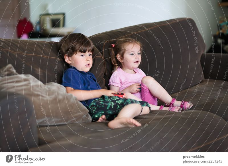 Toddlers boy and girl playing video game sitting on sofa at home Lifestyle Joy Happy Leisure and hobbies Playing Sofa Child Technology Girl Boy (child) Sister