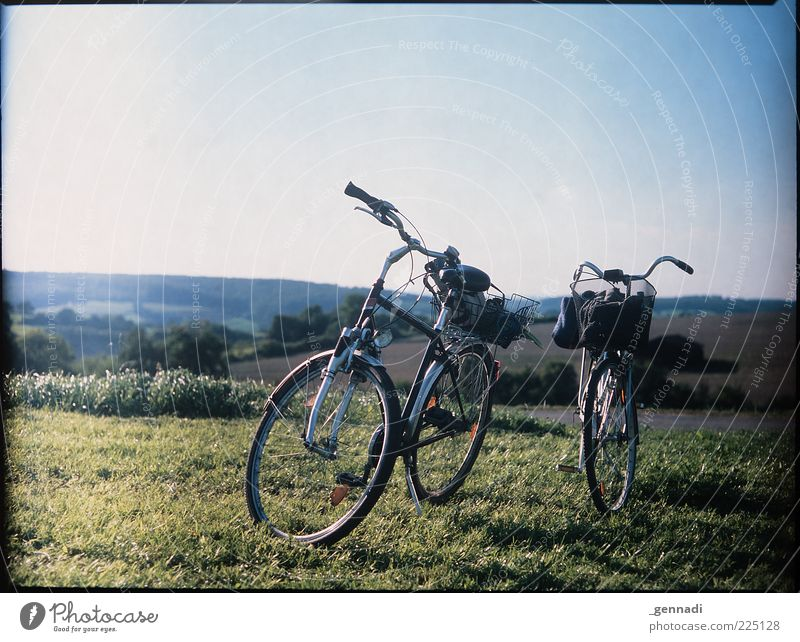 Calm Meadow Grass Bicycle Wait Stand Natural Break Uniqueness Stop Analog Beautiful weather Hip & trendy Frame Sustainability In transit