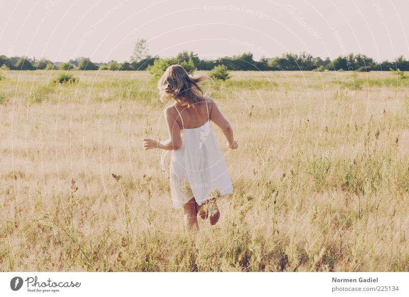 Woman Human being Nature Youth (Young adults) Summer Meadow Feminine Landscape Grass Adults Blonde Walking Running Bushes Dress Joie de vivre (Vitality)
