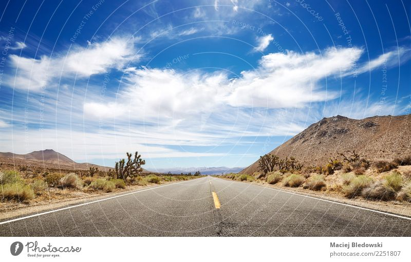 Panoramic picture of an endless road. Sky Vacation & Travel Beautiful Landscape Far-off places Street Lanes & trails Tourism Freedom Trip Wild Horizon Adventure