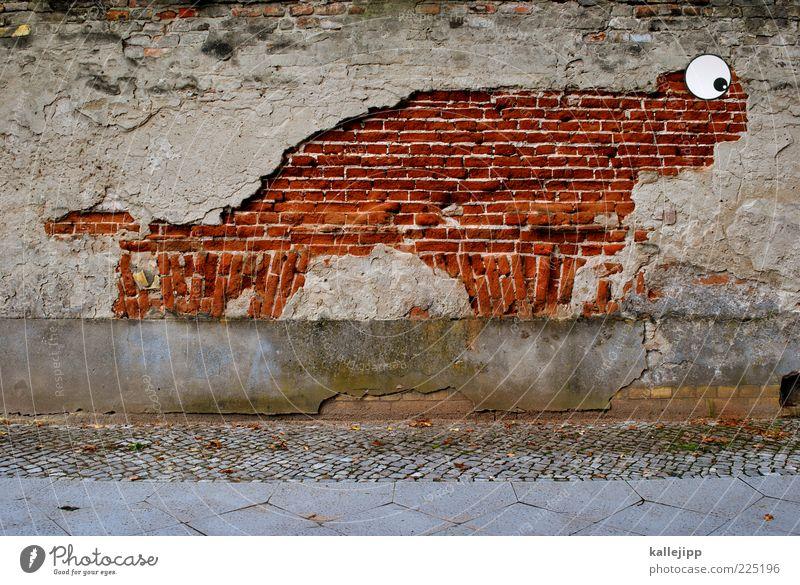 Old Eyes Wall (barrier) Funny Broken Derelict Sidewalk Brick Decline Shabby Plaster Graphic Weathered Flake off Street art Brick wall