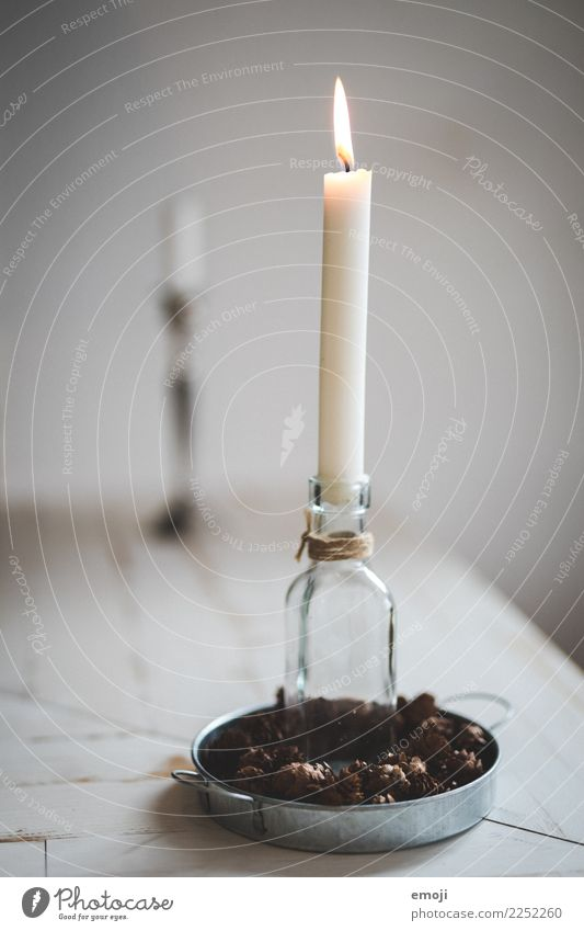 candle Decoration Kitsch Odds and ends Candle Candlelight Christmas & Advent Christmas decoration Beautiful Desire Colour photo Interior shot Detail Deserted