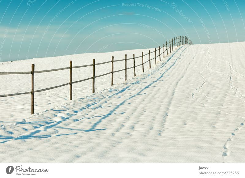 My garden fence. Landscape Winter Beautiful weather Snow Field Old Blue White Fence Border Colour photo Multicoloured Exterior shot Copy Space right Day Light