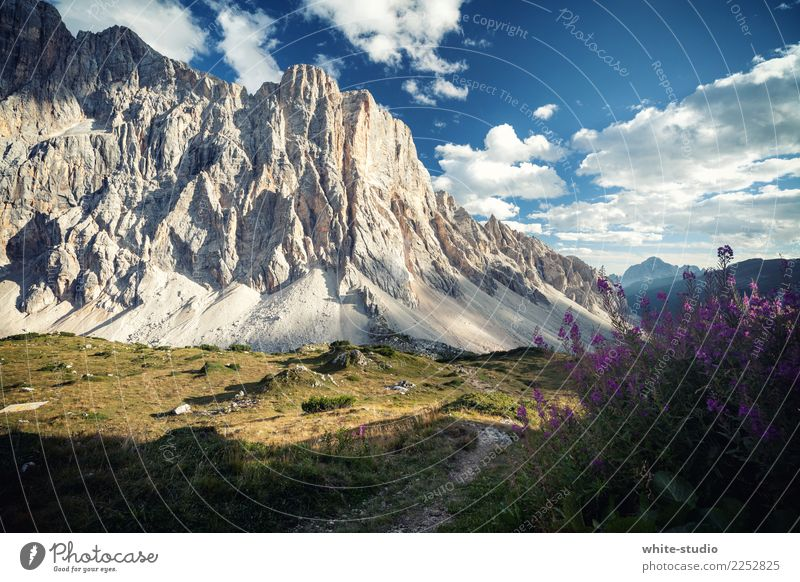 dolomite Hill Rock Alps Mountain civetta Hiking Dolomites South Tyrol Climbing Climbing wall Wall of rock north face Massive Mountain range Colour photo