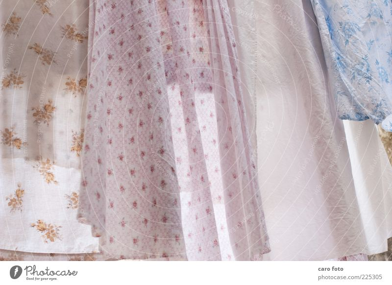 White Blue Summer Calm Air Contentment Pink Fresh Cloth Decoration Clean Illuminate Cleaning Dry Wrinkles Fragrance