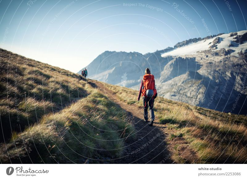 The lonely wanderer Woman Adults Hiking Marmolata Dolomites Lanes & trails Loneliness Resume Backpack Backpacking Backpacking vacation Footpath Going Landscape