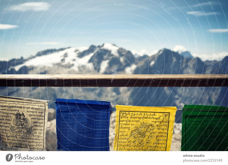 High Top Alps Mountain Peak Snowcapped peak Glacier Hiking Flag Prayer flags Himalayas Nepal Kathmandu Tall Mountaineering Mountain range Ice Vantage point