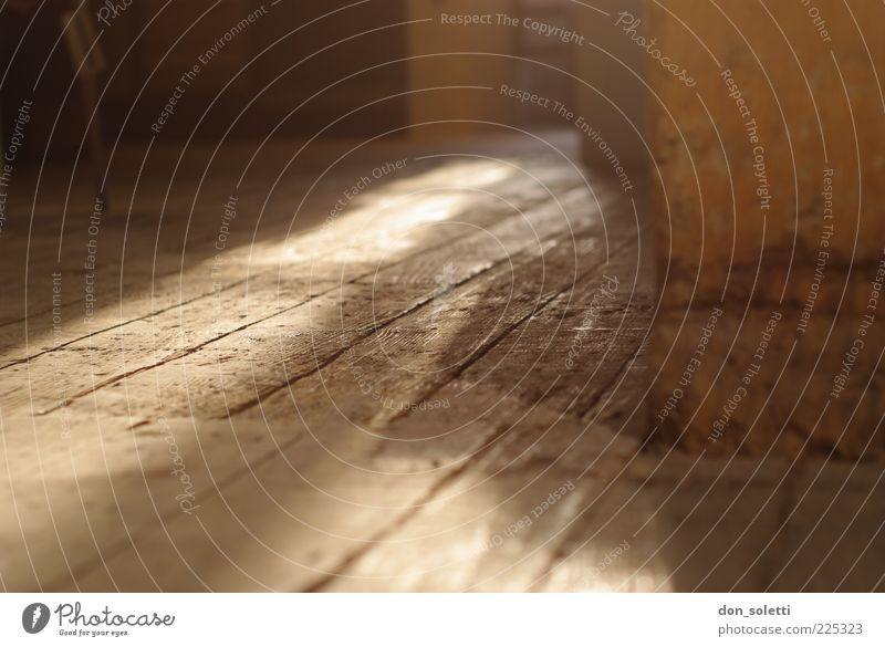 Old Wood Brown Empty Ground Wooden floor Attic Dusty Structures and shapes Floorboards