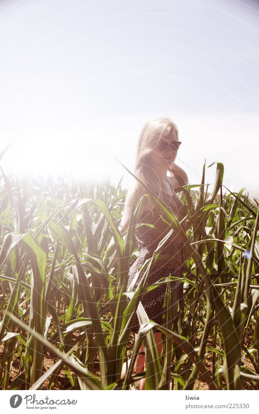 Human being Sky Nature Youth (Young adults) Beautiful Summer Landscape Life Feminine Friendship Bright Blonde Field Fresh Happiness Young woman