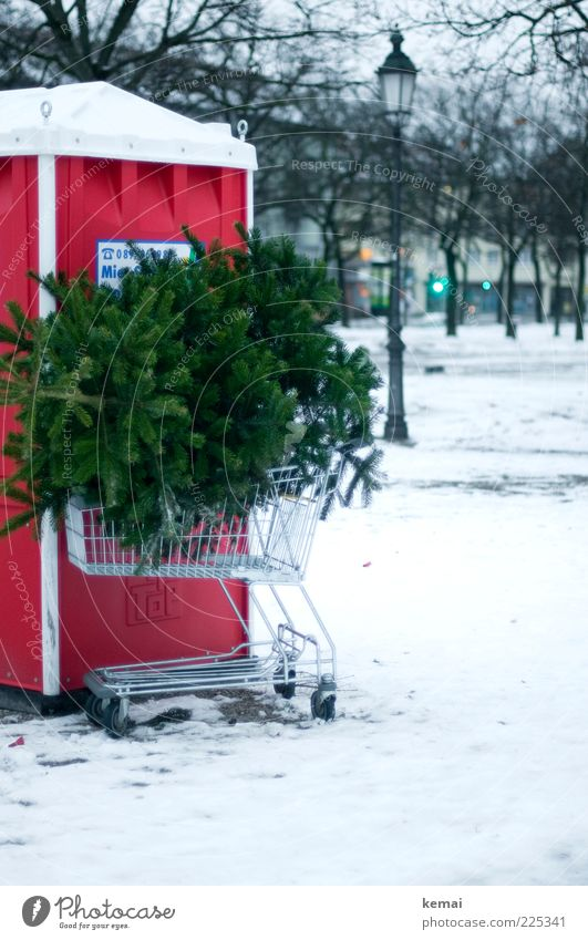 knut Tradition Bad weather Ice Frost Snow Plant Tree Fir tree Town Deserted Toilet Shopping Trolley Lantern Lamp post Street lighting Green Throw away