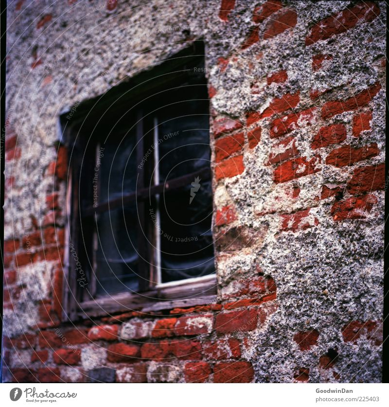 Old House (Residential Structure) Wall (building) Window Wall (barrier) Building Facade Broken Authentic Change Brick Decline Sharp-edged Packing film Wooden window