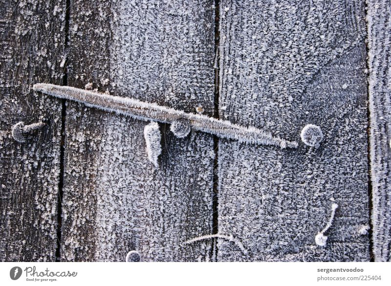 frozen wood Environment Winter Climate Weather Ice Frost Wooden board Wooden fence Nail Metal Old Fresh Cold Broken Near Gray White Esthetic Calm Safety Decline