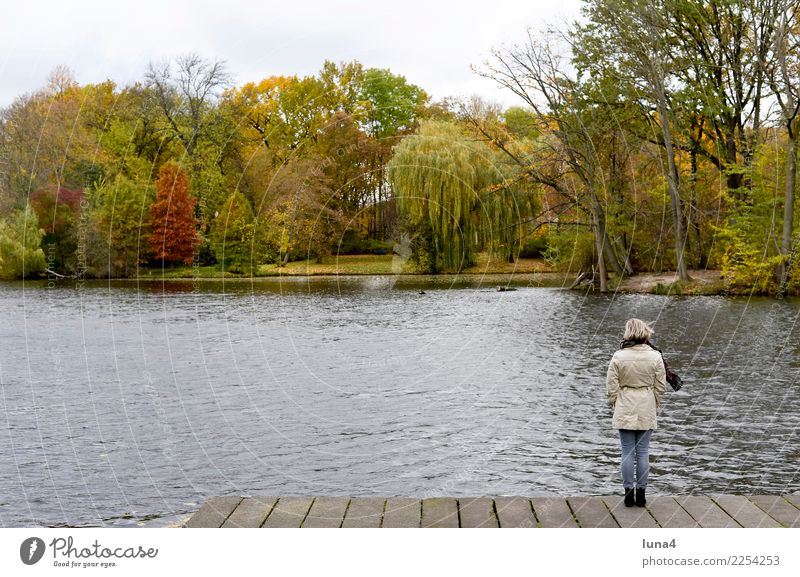 dreariness Meditation Young woman Youth (Young adults) Woman Adults 1 Human being 18 - 30 years Nature Autumn Park Lake Coat Dream Sadness Wait Concern Grief