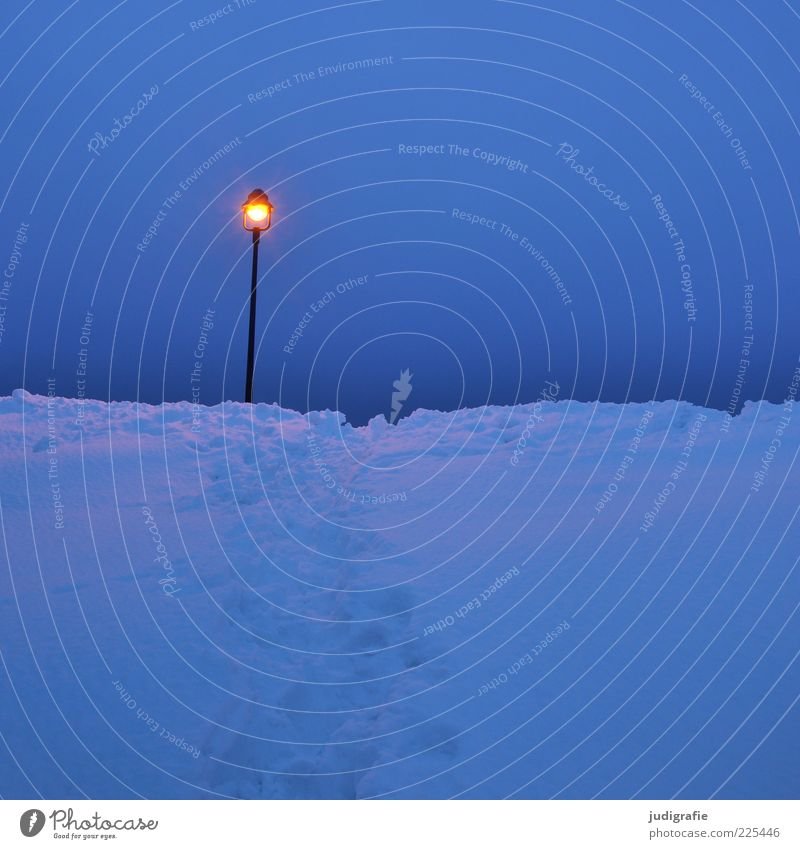 Sky Blue Winter Cold Dark Snow Moody Lamp Bright Illuminate Street lighting Morning Nature Dawn Snow track
