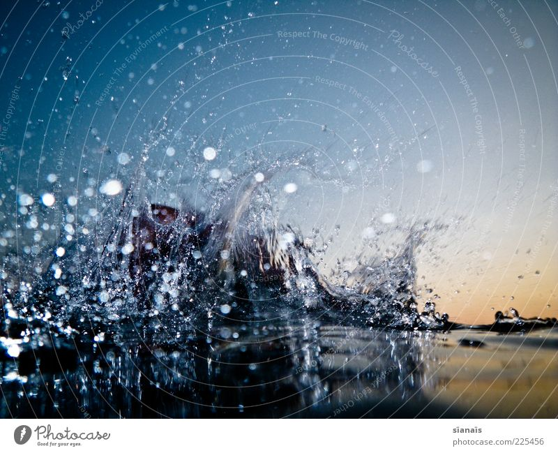 Water Summer Movement Wet Drops of water Wild Elements Dynamics Liquid Surface of water Cloudless sky Multicoloured Splash of water