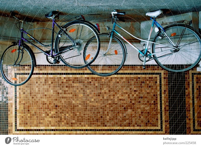 bicycle headliner Bicycle Means of transport Street Lanes & trails Stand Parking area Repair Mosaic Colour photo Multicoloured Exterior shot Deserted Light