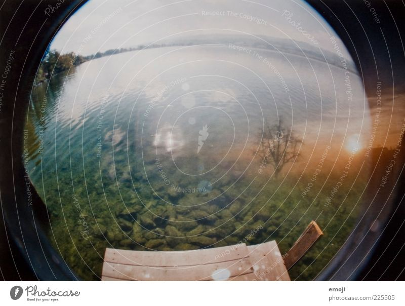Water Tree Lake Exceptional Analog Footbridge Double exposure Lens flare Sunrise Fisheye Vaulting Water reflection