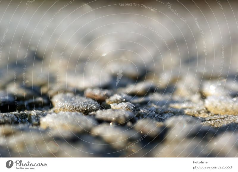 frosty patch Environment Winter Ice Frost Cold Natural Stone Colour photo Exterior shot Deserted Copy Space top Morning Day Light Light (Natural Phenomenon)