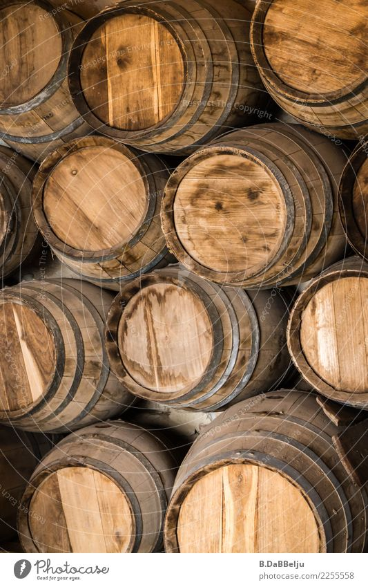 Beautifully stacked, old wooden barrels stacked one on top of the other or from above? Keg Old Exterior shot Vine Wine cask Colour photo Deserted