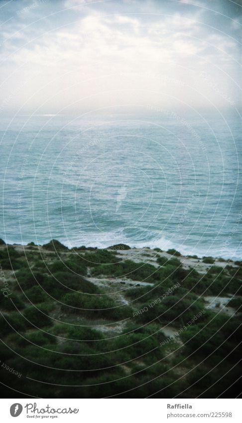 Nature Water Blue Plant Ocean Clouds Calm Far-off places Landscape Grass Gray Sand Coast Waves Fresh Bushes