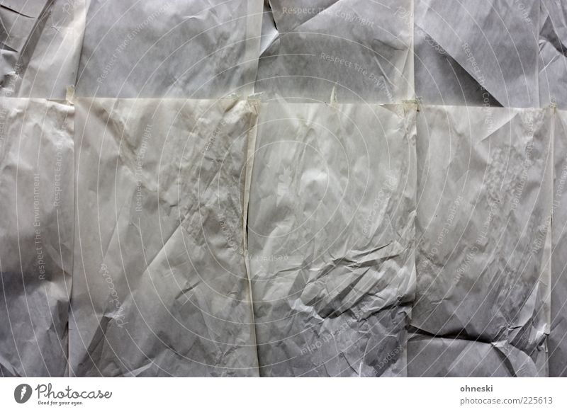 To lease Deserted Window Shop window Paper Gray Crisis Insolvency Closed Store premises Subdued colour Abstract Pattern Structures and shapes Concealed