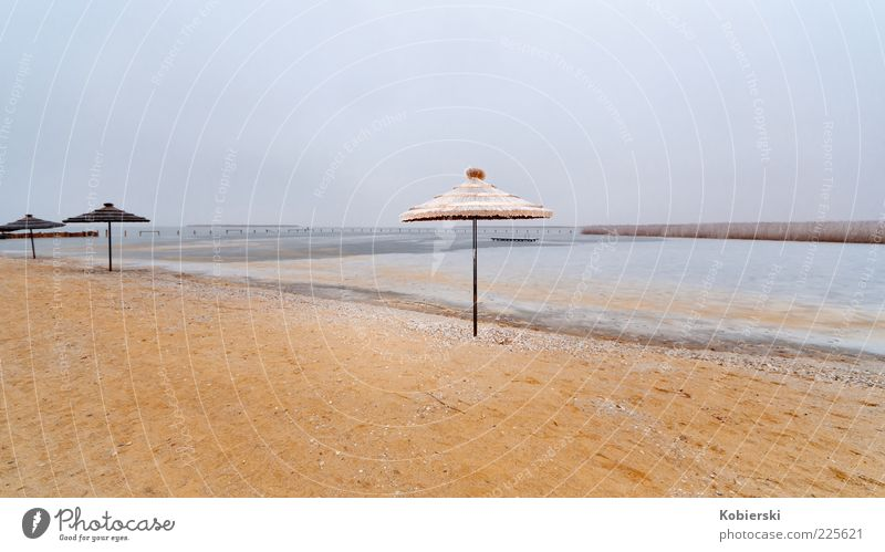 When's it gonna be summer again? Lakeside Deserted Sand Water Blue Brown Serene Loneliness Horizon Nature Calm Lake Neusiedl Colour photo Exterior shot