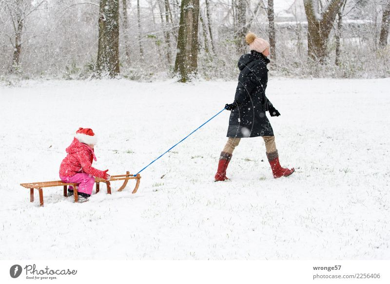 first snow Sledding Winter Snow Human being Feminine Child Girl Woman Adults Female senior Grandmother 2 3 - 8 years Infancy 45 - 60 years Brown Pink Black