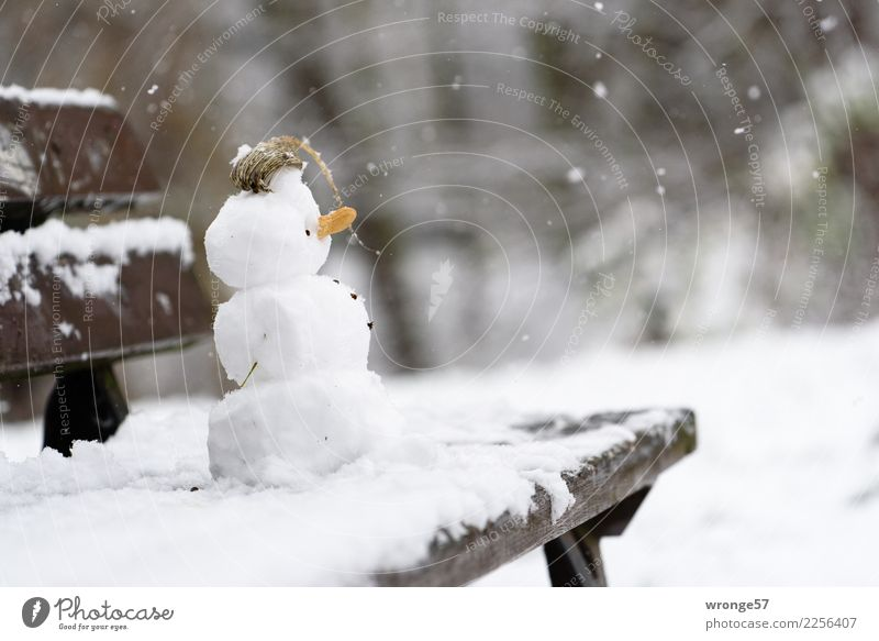 winter construction site Leisure and hobbies Winter Cold Small Brown White Snowfall Snowman Park bench Colour photo Subdued colour Exterior shot Close-up