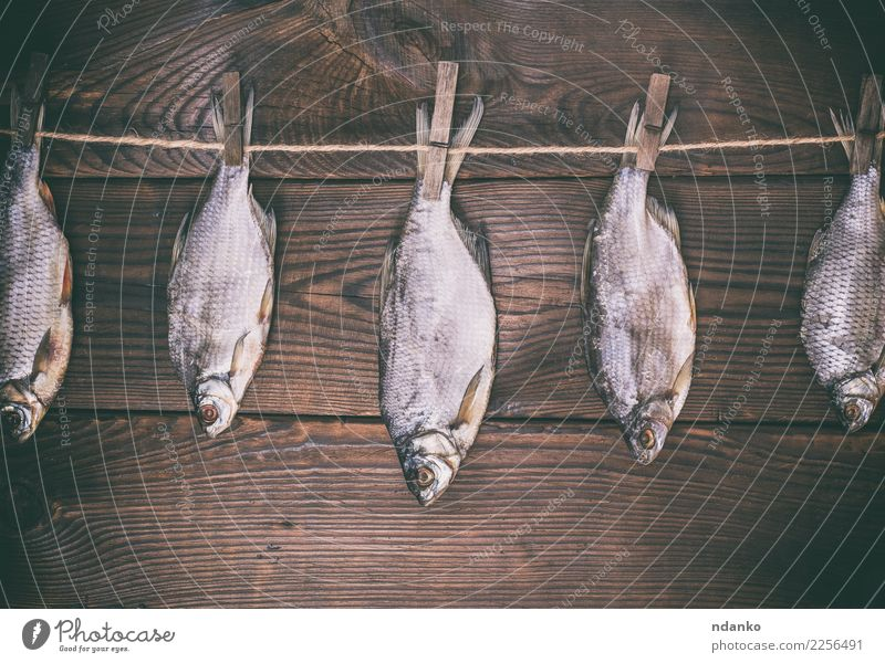 fish ramming in scales Fish Seafood Nutrition Rope Animal Wood Hang Natural Above Retro Brown Consistency background dry board Gourmet Roach Rustic empty space