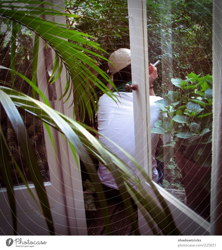 Human being Man Plant Leaf Calm Adults Relaxation Window Contentment Smoking 18 - 30 years Balcony Slice Young man Pot plant Palm frond