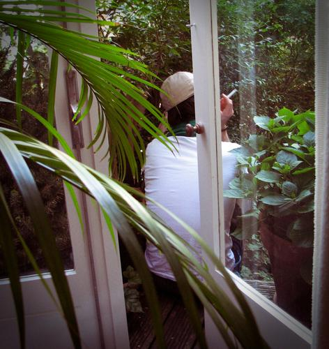 rest Contentment Relaxation Calm Human being Man Adults 1 Smoking Colour photo Day Rear view Plant Balcony Pot plant Leaf Palm frond Slice Window French windows