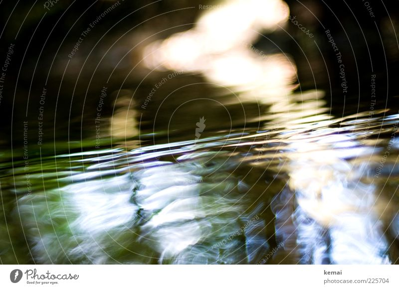 Water and Light Environment Nature Sunlight Summer Beautiful weather Brook River Dark Wet Flow Waves Surface of water Colour photo Subdued colour Exterior shot