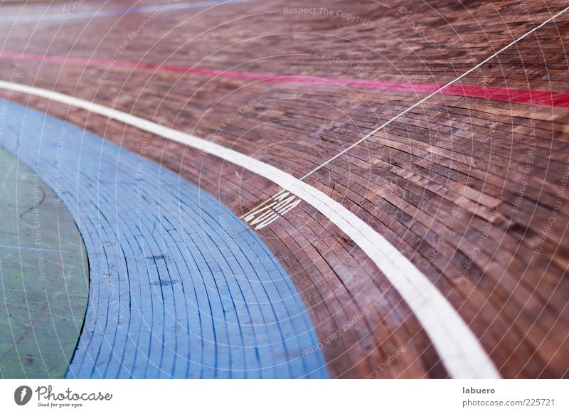 In the curve Sports Sporting Complex Racecourse cycling track Wood Speed Curve Colour photo Interior shot Detail Deserted Shallow depth of field Cycle race