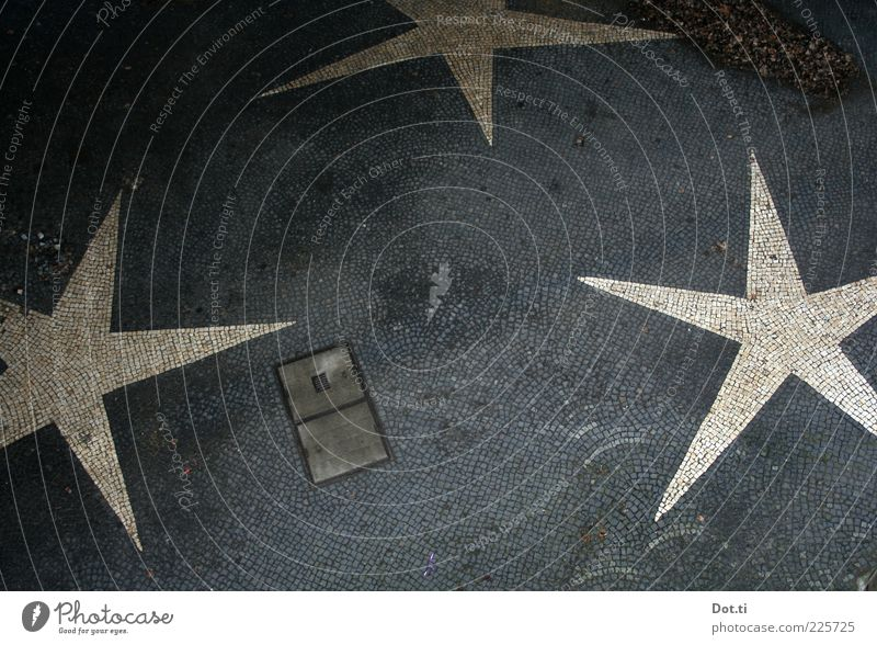 Schläfli paving Deserted Places Decoration Stone Sign Point Gray White Star (Symbol) 3 Gully Paving stone Mosaic Bird's-eye view Colour photo Exterior shot