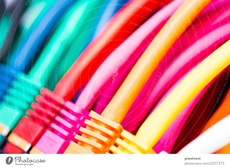Yellow To talk Pink Office Technology Communicate Telecommunications Computer Cable Network Internet Information Technology Computer network Teamwork Online