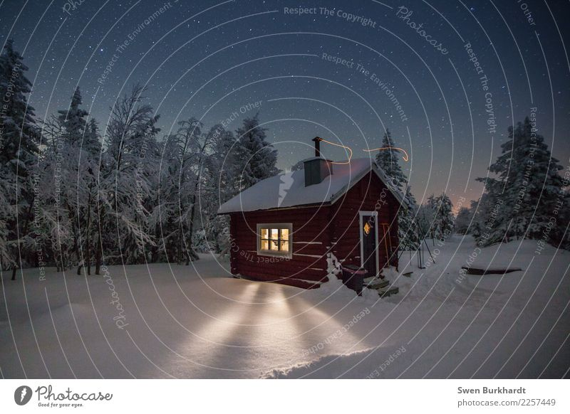 Sky Vacation & Travel Christmas & Advent Landscape Tree House (Residential Structure) Winter Far-off places Forest Environment Cold Snow Freedom