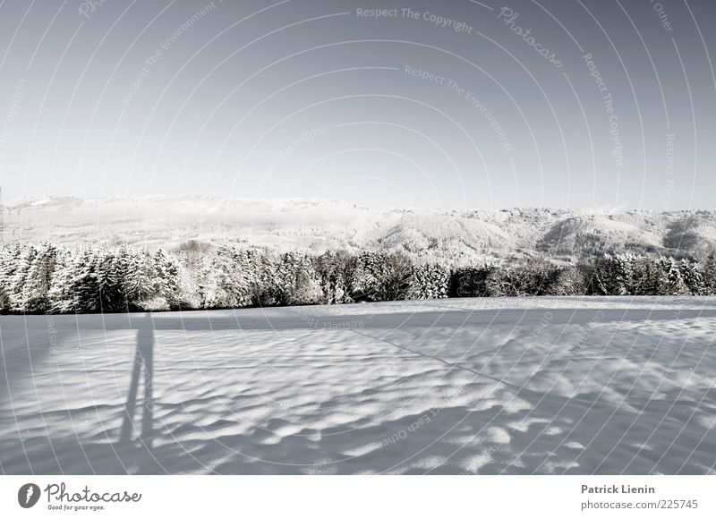Take a look around Environment Nature Landscape Elements Air Sky Cloudless sky Winter Climate Weather Beautiful weather Snow Tree Meadow Forest Hill Mountain