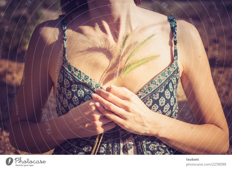 Breath Woman Nature Summer Hand Relaxation Calm Joy Adults Life Environment Senior citizen Feminine Health care Freedom Leisure and hobbies Contentment