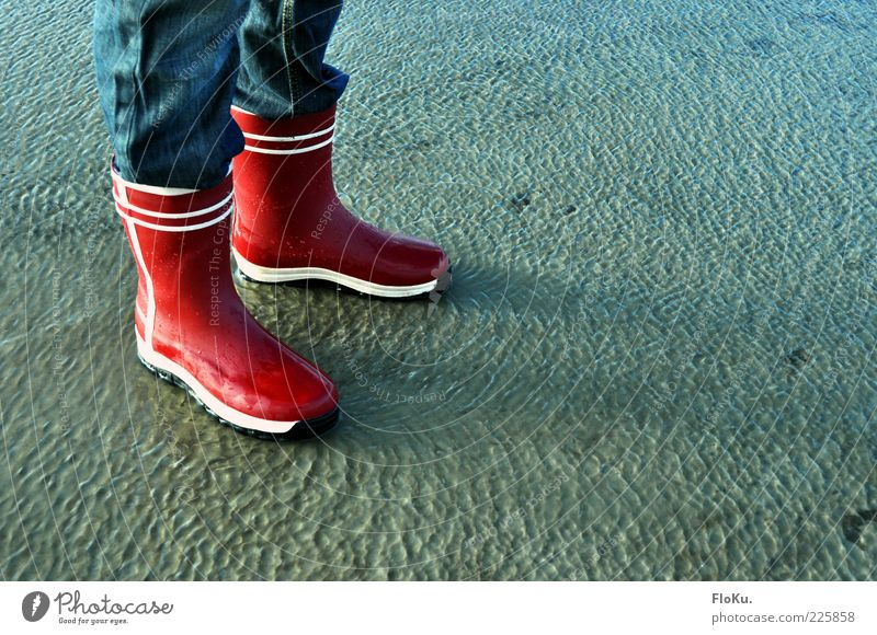 Human being Nature Water Blue Red Beach Environment Coast Legs Feet Earth Wet Stand North Sea Fluid Lakeside