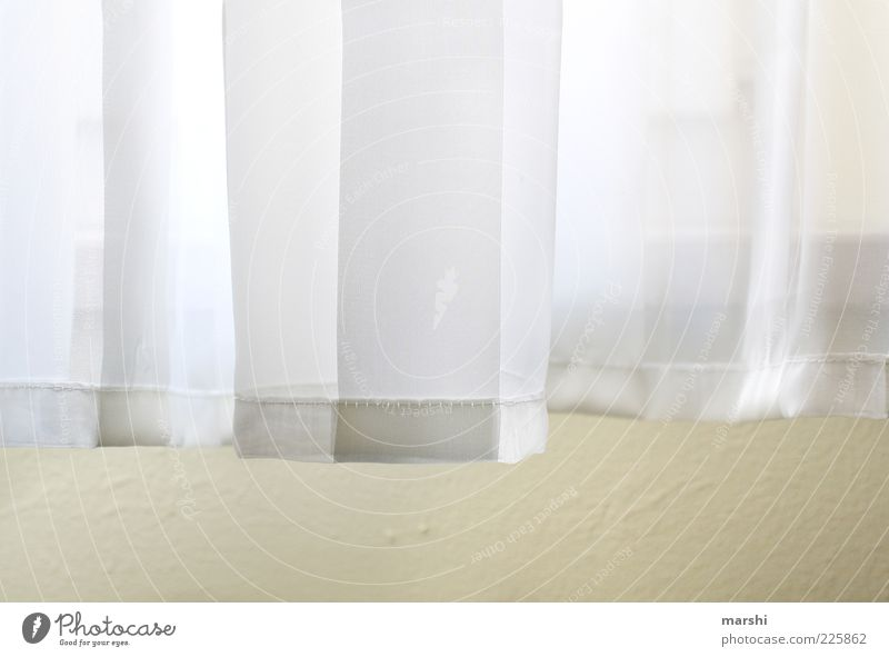 Good morning sunshine... Curtain Bright Cloth Light Flare Drape Colour photo Interior shot Detail Sunlight White Deserted Wall (building)