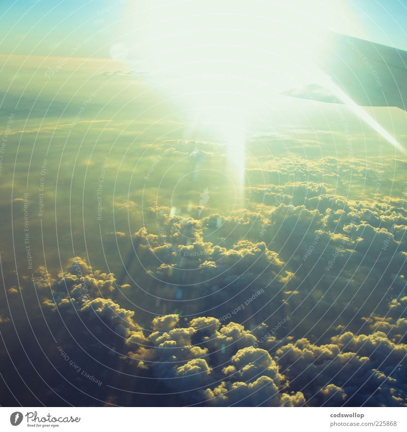 Sky Sun Clouds Calm Flying Wing Wanderlust Nature Homesickness Bird's-eye view Cloud cover Glare effect Above the clouds
