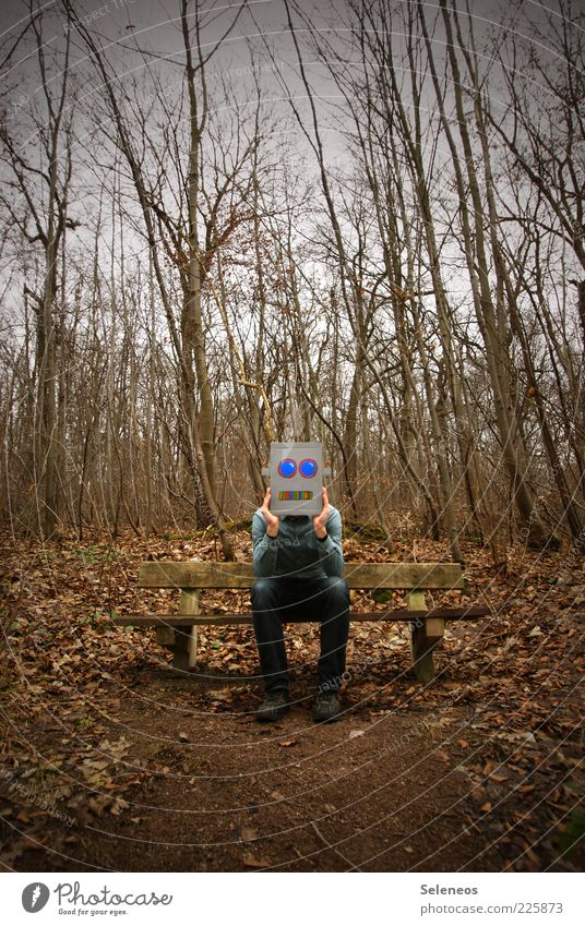 Human being Tree Face Loneliness Forest Autumn Funny Wait Sit Exceptional Mask Whimsical Boredom Cardboard Dress up