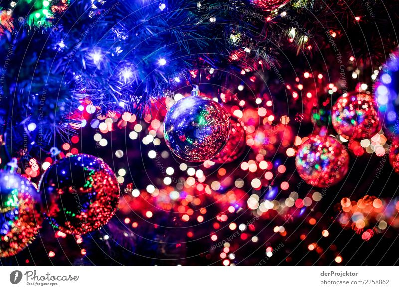 Christmas & Advent Blue Joy Love Emotions Happy Lamp Feasts & Celebrations Pink Moody Together Friendship Contentment Happiness Joie de vivre (Vitality)