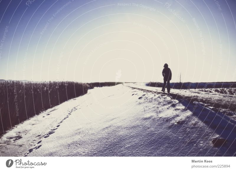 Human being Nature Loneliness Far-off places Cold Snow Freedom Emotions Grass Lanes & trails Sadness Moody Weather Ice Power Fear