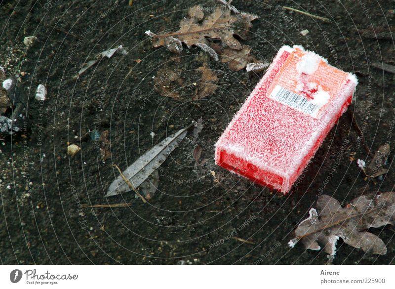 Old White Red Leaf Winter Street Cold Gray Ice Dirty Cool (slang) Floor covering Frost Asphalt Trash Frozen