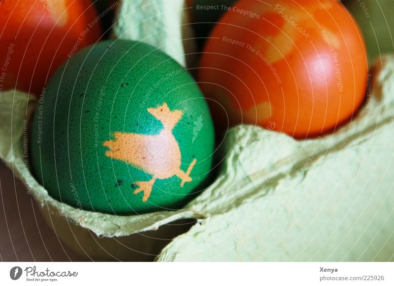 Green Food Orange Feasts & Celebrations Easter Egg Figure Handicraft Painted Easter egg Oval Eggs cardboard