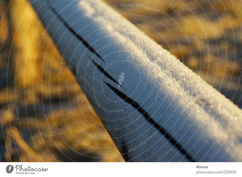 White Blue Winter Yellow Cold Wood Line Brown Ice Glittering Esthetic Frost Handrail Freeze Beautiful weather Crack & Rip & Tear