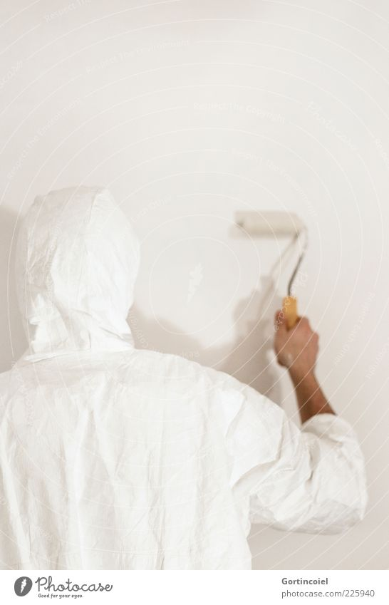 White Colour Wall (building) Wall (barrier) Bright Fresh New To hold on Painting (action, work) Redecorate Painter Coil New start Profession Protective clothing
