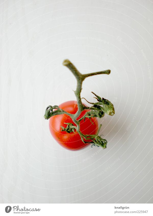 Almost ketchup Food Vegetable Tomato Nutrition Organic produce Vegetarian diet Diet To dry up Healthy Delicious Green Red White Appetite low in calories